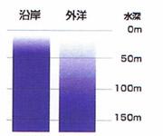 海中の明るさの比較