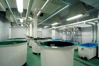 養殖実験室